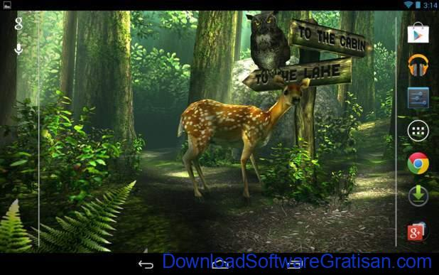 Live Wallpapers Android Gratis Terbaik Forest HD