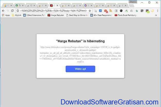 Plugin Chrome untuk Mengelola Tab Tab Hibernation