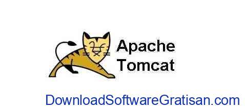 Apache Tomcat web server